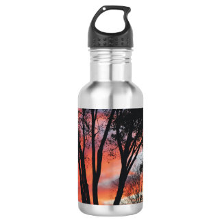 Sunset in the Woods Water Bottle