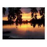 Sunset in WIndermere, Florida postcard