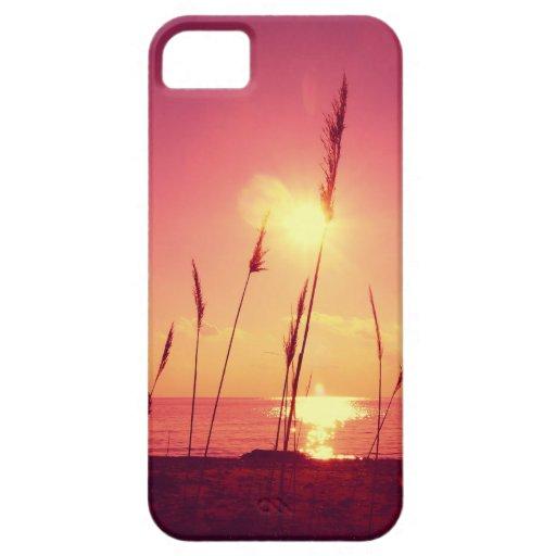 sunset iPhone 5 case