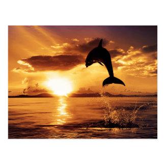 Sunset jump postcard