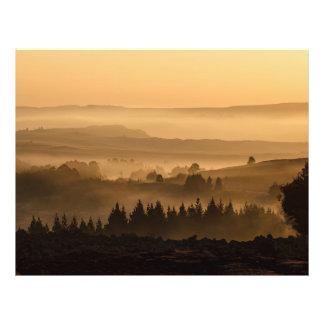 Sunset landscape flyer