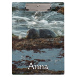 Sunset Lit Harbor Seal Clipboard