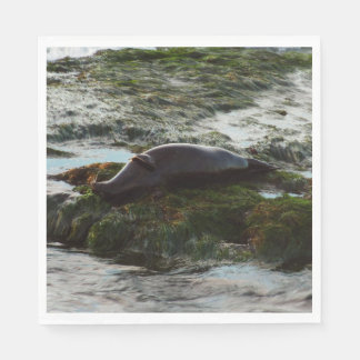 Sunset Lit Harbor Seal II at San Diego Napkin
