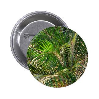 Sunset Lit Palm Fronds Button