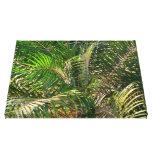 Sunset Lit Palm Fronds Canvas Print