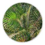 Sunset Lit Palm Fronds Ceramic Knob