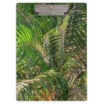Sunset Lit Palm Fronds Clipboard