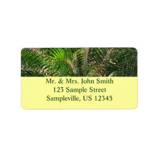 Sunset Lit Palm Fronds Return Address Label
