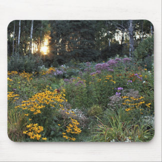 Sunset Mid-September Gardens Mouse Pad