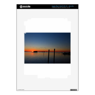 Sunset Migration Decal For iPad 3
