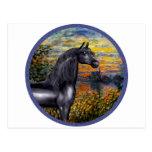 Sunset(Monet) - Black Arabian Horse Postcard