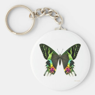 Sunset Moth Keychain