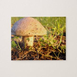 Sunset Mushroom Puzzle