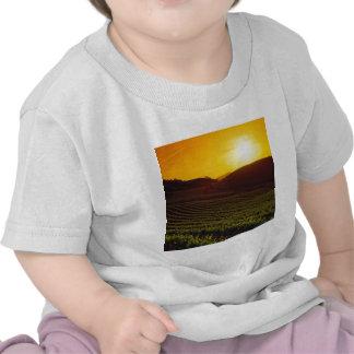 Sunset Napa Valley Tshirt