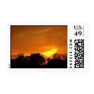 Sunset near NAS Oceana, VA. Stamp