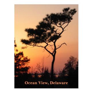 Sunset Ocean View Postcard