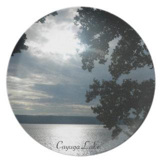 SUNSET ON CAYUGA LAKE plate