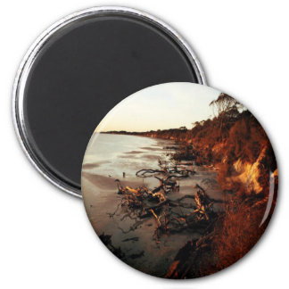Sunset on Driftwood 2 Inch Round Magnet