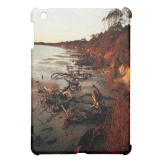 Sunset on Driftwood iPad Mini Cover