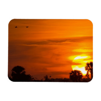 Sunset on Fire Magnet