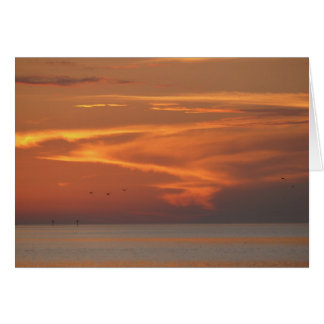 Sunset On Gulf Greeting Card