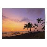 Sunset on Kahaluu Bay in Kona,Hawaii 2 Cards