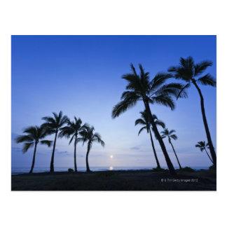 Sunset on Kahaluu Bay in Kona,Hawaii Postcard