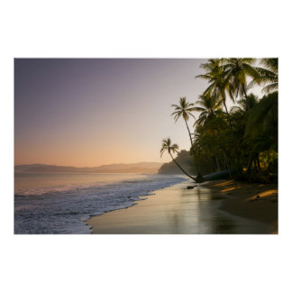 Sunset On Palm Fringed Beach, Costa Rica Poster