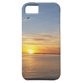 Sunset on Thanksgiving. iPhone SE/5/5s Case