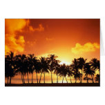 Sunset on the Beach With Coconut Tree Greeting Card