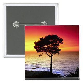 Sunset on the famous Monterey Peninsula, Monterey, 2 Inch Square Button