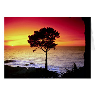 Sunset on the famous Monterey Peninsula, Monterey, Greeting Card