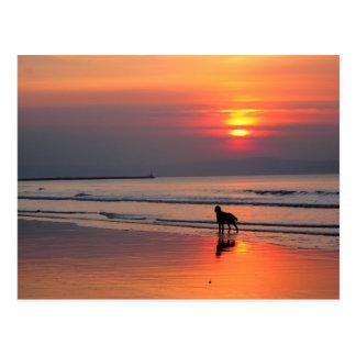 Sunset on the Irish Sea Postcard