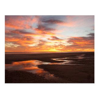 Sunset On The Sea Of Cortez Postcard