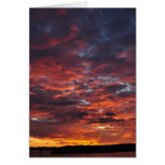 Sunset over Auckland Greeting Card