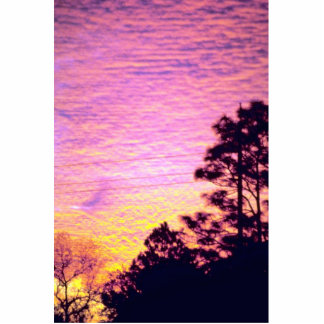 Sunset over Citrus County, Florida Photo Cut Out