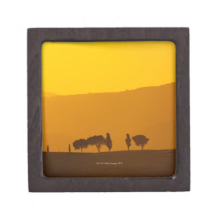 Sunset over cypress and pine trees in Val Gift Box