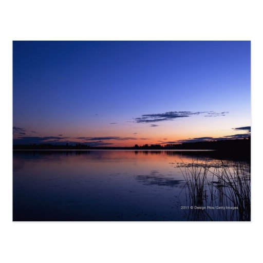 Sunset Over Lake Wabamun With Grass Postcard