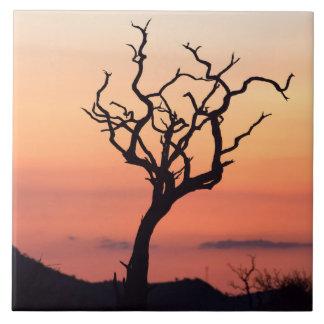 Sunset over Madikwe Tile