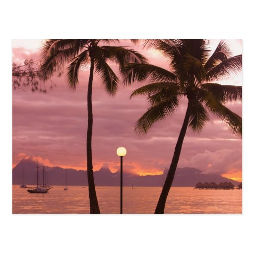 Sunset over Moorea from Sofitel Maeva Beach Postcard