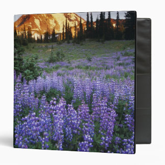 Sunset over Mt. Adams and a sub-alpine meadow 3 Ring Binder