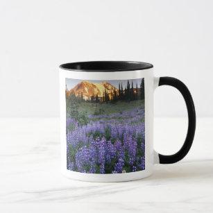 Sunset over Mt. Adams and a sub-alpine meadow Mug