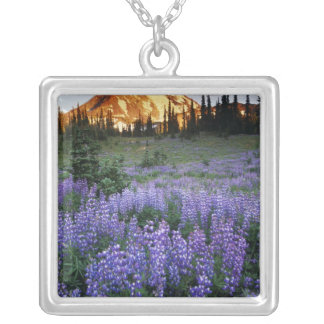 Sunset over Mt. Adams and a sub-alpine meadow Jewelry