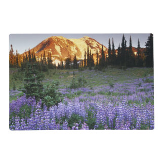 Sunset over Mt. Adams and a sub-alpine meadow Placemat