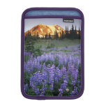 Sunset over Mt. Adams and a sub-alpine meadow Sleeve For iPad Mini
