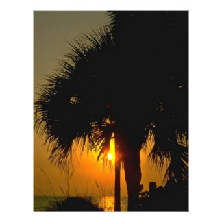 """Sunset Over Palm Trees 8.5"""" X 11"""" Flyer"""