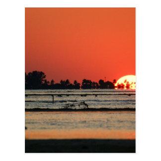 Sunset over Sanibel Postcard