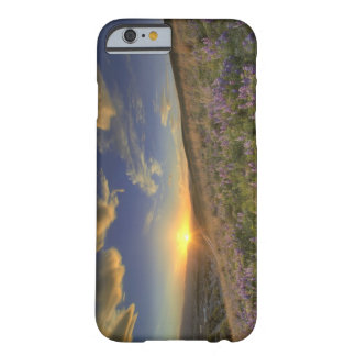 Sunset over the Bitterroot Mountains and vast Barely There iPhone 6 Case