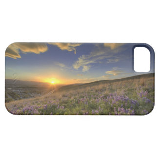 Sunset over the Bitterroot Mountains and vast iPhone SE/5/5s Case