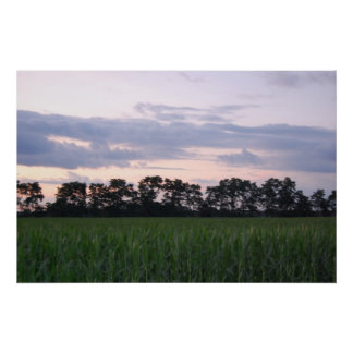 Sunset over the cornfield 5 By Peeka Posters